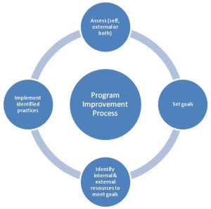 Quality Improvement Program