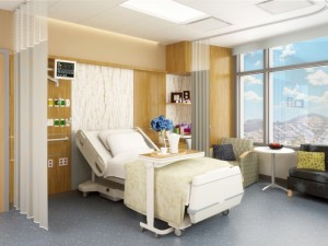 Build It And Patients Will Come Maybe Not