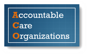 Highly Successful ACOs