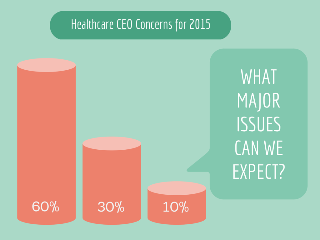 Healthcare CEO Concerns