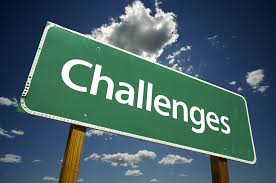 Hospital Challenges 2015